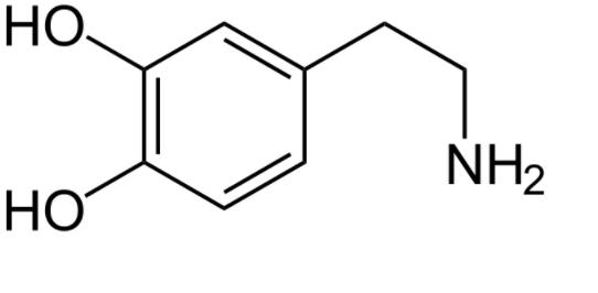 dopamina-social-network